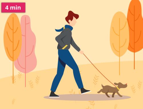 Povinné čipování psů a pojištění odpovědnosti za zvíře